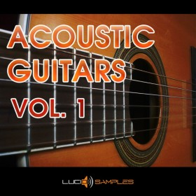 Acoustic Guitars Vol. 1