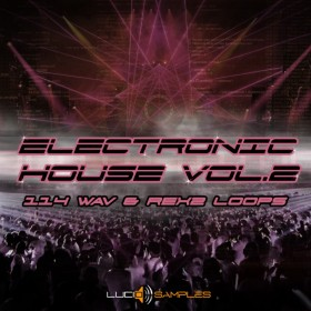 Electronic House Vol. 2